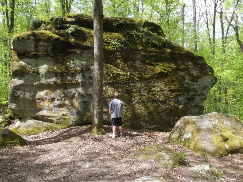 Allegany Thunder Rocks